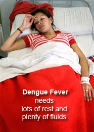 Dengue fever patient